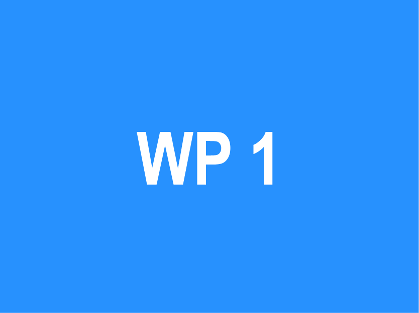 WP 1 – Gap analysis and existing knowledge capital analysis