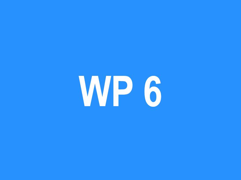 WP 6 – Sustainability