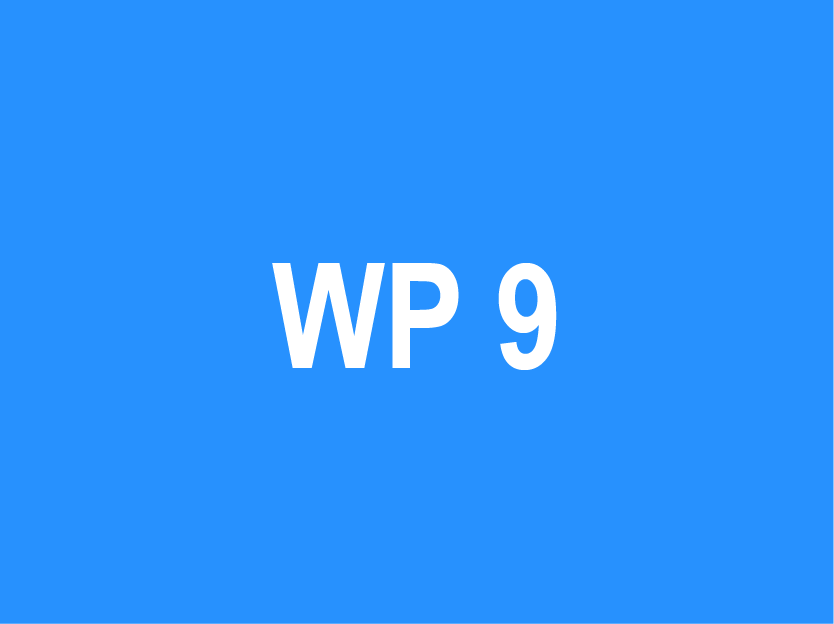 WP 9 – Project Management